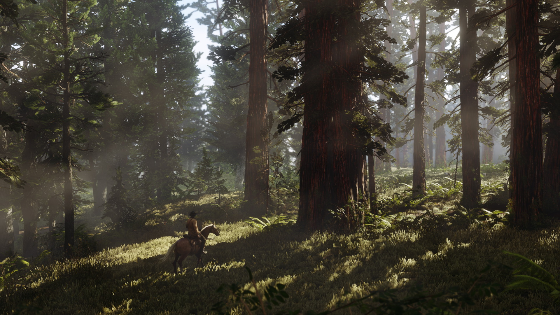 rdr2_screenshot-003